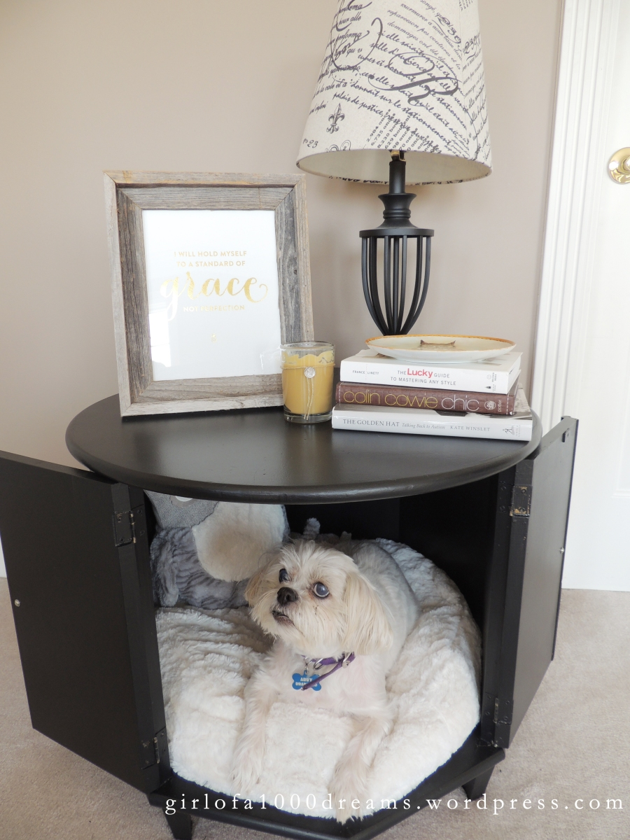 Thrift Store Hash: Side Table Pet Bed