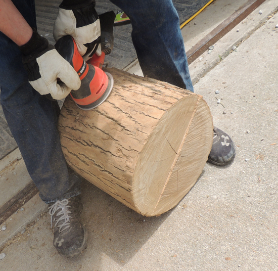 sanding-tree-stumps
