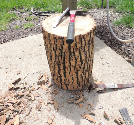 tree-stump-with-bark-removed